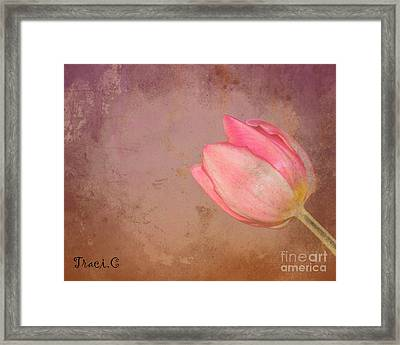 Framed Print featuring the photograph Allure by Traci Cottingham