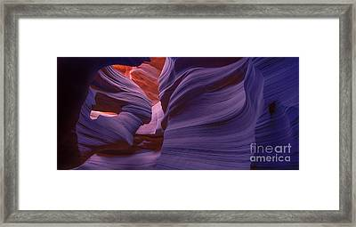 Alluring Beauty - Fluorescent Framed Print by Marco Crupi