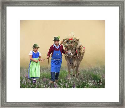 Almabtrieb Framed Print by Eva Lechner