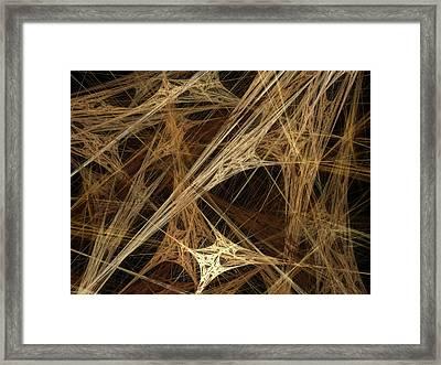 Almond Framed Print by Amanda Schambon