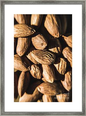 Framed Print featuring the photograph Almond Nuts by Jorgo Photography - Wall Art Gallery