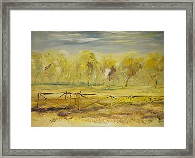 Almond Trees In Summer Framed Print by Edward Wolverton