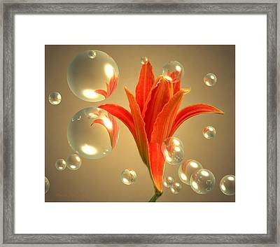 Almost A Blossom In Bubbles Framed Print