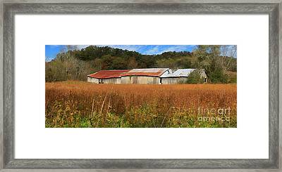 Almost Autumn Framed Print by Benanne Stiens