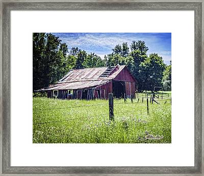 Almost Gone But Still Standing Framed Print
