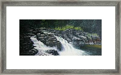 Almost Home - Lucia Falls Framed Print by Ron Smothers