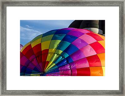 Almost Lift Off Framed Print by Teri Virbickis