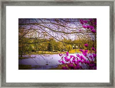 Almost Spring - Landscape Framed Print by Barry Jones