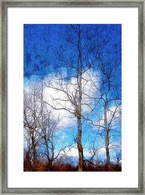Almost Spring Framed Print by Spyder Webb