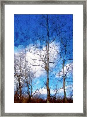 Almost Spring Framed Print