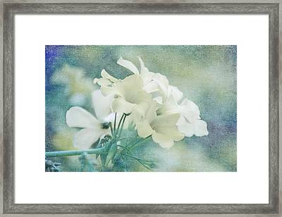 Almost Spring Framed Print