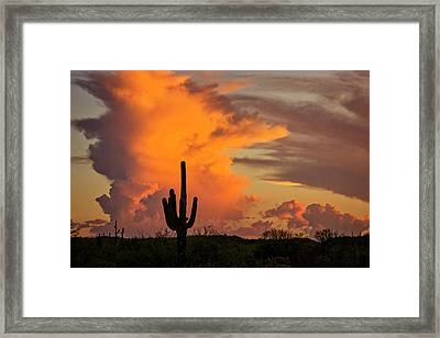 Almost Touch The Clouds  Framed Print