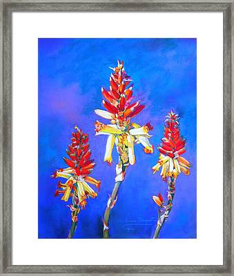 Aloe Flower Spike Framed Print by M Diane Bonaparte
