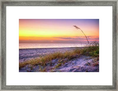 Framed Print featuring the photograph Alone At Dawn by Debra and Dave Vanderlaan
