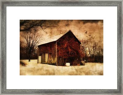 Alone At Sunset Framed Print by Mary Timman