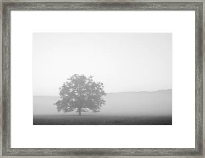 Framed Print featuring the photograph Alone by Bob Decker