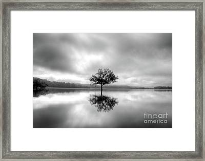 Framed Print featuring the photograph Alone Bw by Douglas Stucky