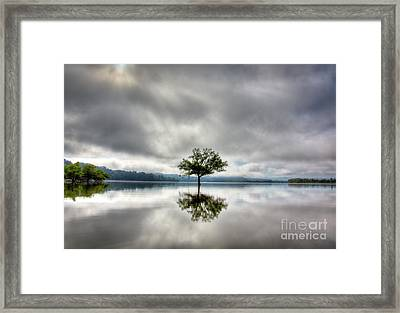 Alone Framed Print by Douglas Stucky