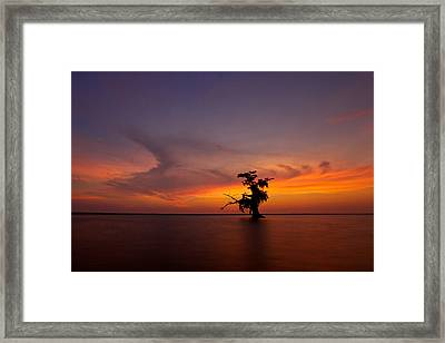 Alone Framed Print by Evgeny Vasenev