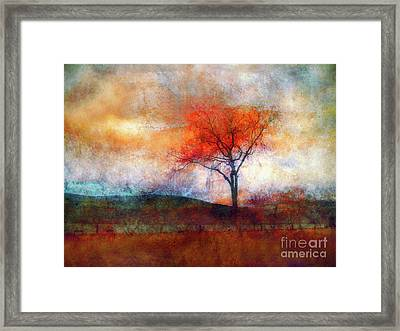 Alone In Colour Framed Print by Tara Turner