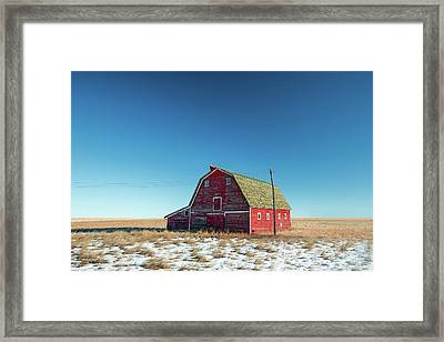 Alone In The Middle Framed Print by Todd Klassy