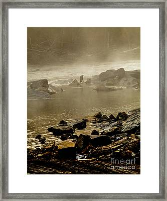 Framed Print featuring the photograph Alone In The Mist by Iris Greenwell