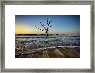 Alone In The Water Framed Print
