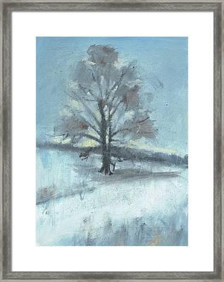 Alone In Winter Framed Print