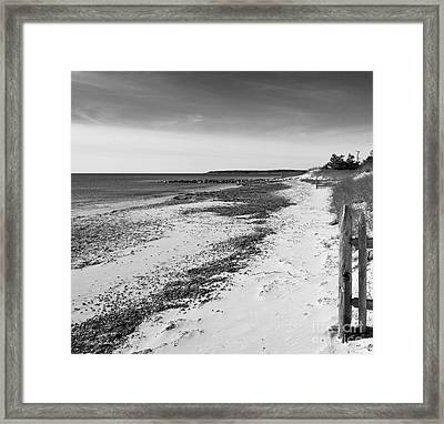 Framed Print featuring the photograph Alone by Michelle Wiarda