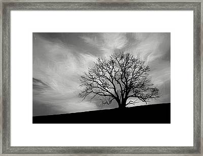 Alone On A Hill In Black And White Framed Print