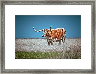 Framed Print featuring the photograph Alone On The Trail by Linda Unger