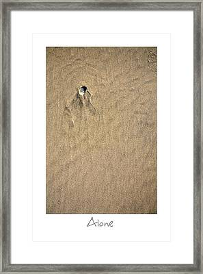 Alone Framed Print by Peter Tellone