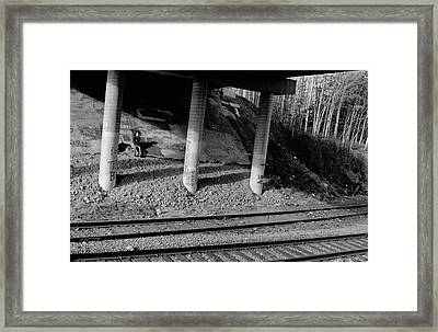 Framed Print featuring the photograph Alone Time by Tara Lynn