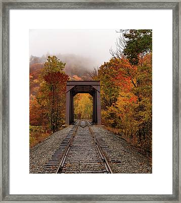 Alone With The Fog Framed Print
