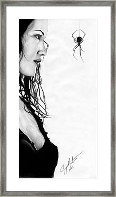 Along Came A Spider Framed Print