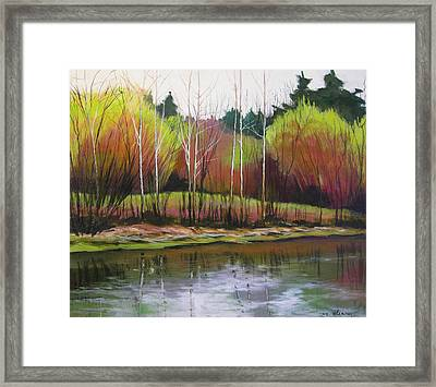 Along Fanno Creek Framed Print by Melody Cleary