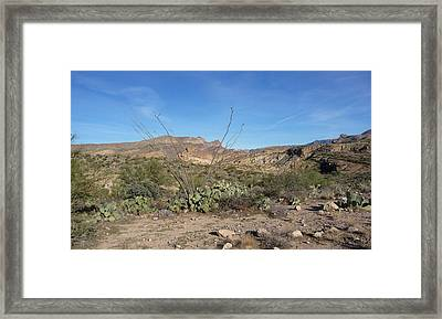 Framed Print featuring the photograph Along The Apache Trail by Joel Deutsch