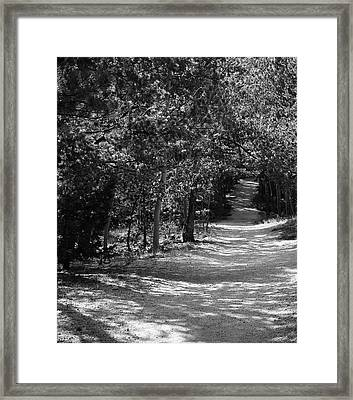 Along The Barr Trail Framed Print