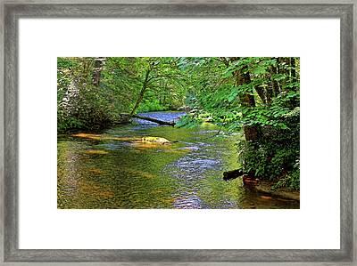 Along The Cullasaja River Framed Print