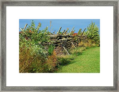 Along The Fence - Battlefield Orchards Framed Print by Angie Tirado