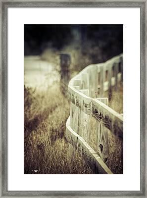 Along The Fence Framed Print by Debra Forand