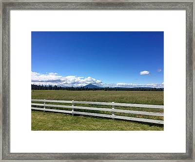 Along The Fence Line Framed Print