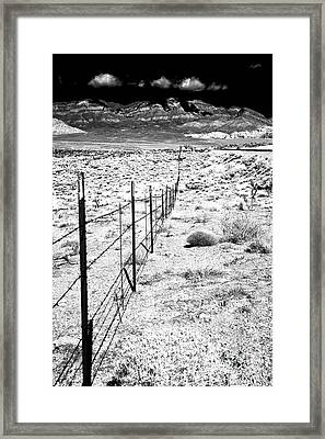 Along The Fence Line Framed Print by John Rizzuto