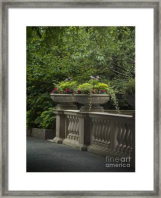 Along The Garden Path Framed Print by Margie Hurwich