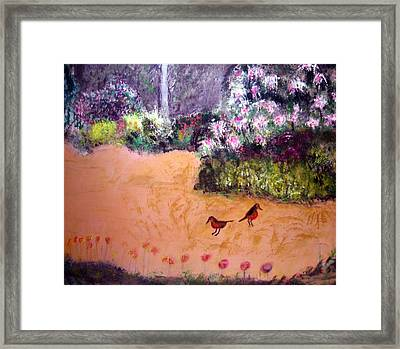 Along The Garden Path Framed Print by Michela Akers