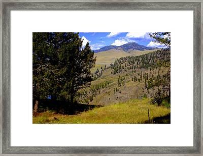 Along The Hell Roaring Creek Trail Framed Print by Marty Koch