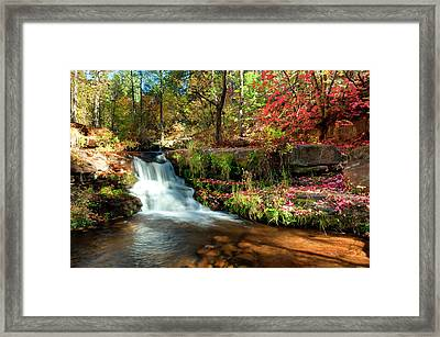 Framed Print featuring the photograph Along The Horton Trail by Anthony Citro
