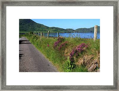 Along The Kerry Way Framed Print