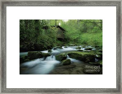 Along The Morning Stream Framed Print by Michael Eingle