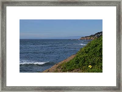 Along The Pacific Coast  Framed Print by Brianna Culbertson